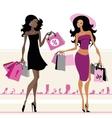 Women shopping bags vector image