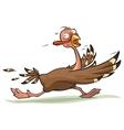 Thanksgiving turkey runs vector image