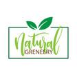 natural greneery sapling frame white background ve vector image