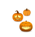 a set of pumpkins on a white background for vector image
