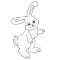Cartoon Rabbit vector image
