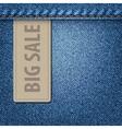 Big Sale Jeans Background vector image
