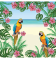 Exotic tropical card with parrot birds and flowers vector image