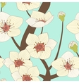 blooming tree vector image