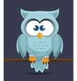Owl character design vector image