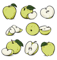 Green apple with leaf and slice diet fruit vector image