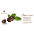 fresh roasted coffee beans vector image