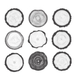 Collection of Tree Rings vector image