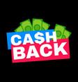cash back modern flat style vector image