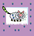 fruit cat vector image