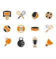 Sports Balls icons set vector image