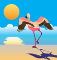 flamingo on the shore vector image