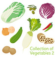 Vegetables 02 vector image