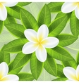 Spring ecological background with beautiful white vector image