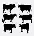 cow and bull animal silhouette vector image