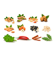 mega collection of colorful nuts upd vector image vector image