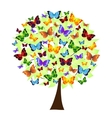 flower tree with colored butterflies vector image