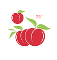 Peach Isolated fruit on white background vector image