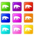 bear set 9 vector image