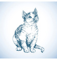 Cute cat sketch vector image