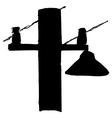 street lamppost vector image vector image