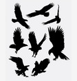 Eagle flying silhouettes vector image