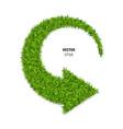 green grass arrow vector image