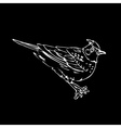 Hand-drawn pencil graphics lark sparrow vector image