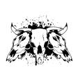 skull bull 3 vector image vector image