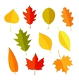 autumn leaves icon set vector image