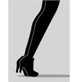 womens legs vector image vector image