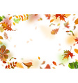 bright autumn leaves fall down vector image