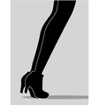 womens legs vector image