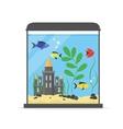 Glass Aquarium for Interior Home vector image