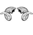 Ram On Ram Horns vector image