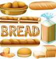 Bread in various kinds vector image vector image