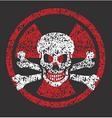 Nuclear skull symbol vector image