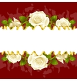 frame whith white roses vector image vector image