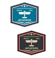 Aviation symbol or insignia with airplane vector image