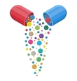 capsule pharmaceutical with vitamins and minerals vector image
