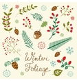 Winter foliage set vector image