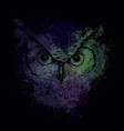head of an owl at night on a bright background vector image