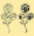 Roses Oldskool Tattoo style element vector image