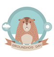 Groundhog dayMarmot in label isolated on white vector image