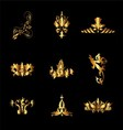 Set of Golden Vintage Elements for Design vector image