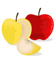 sweet and forbidden apple vector image
