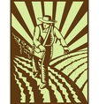 Farmer sowing seeds with sunburst vector image