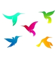 Flying color hummingbirds vector image