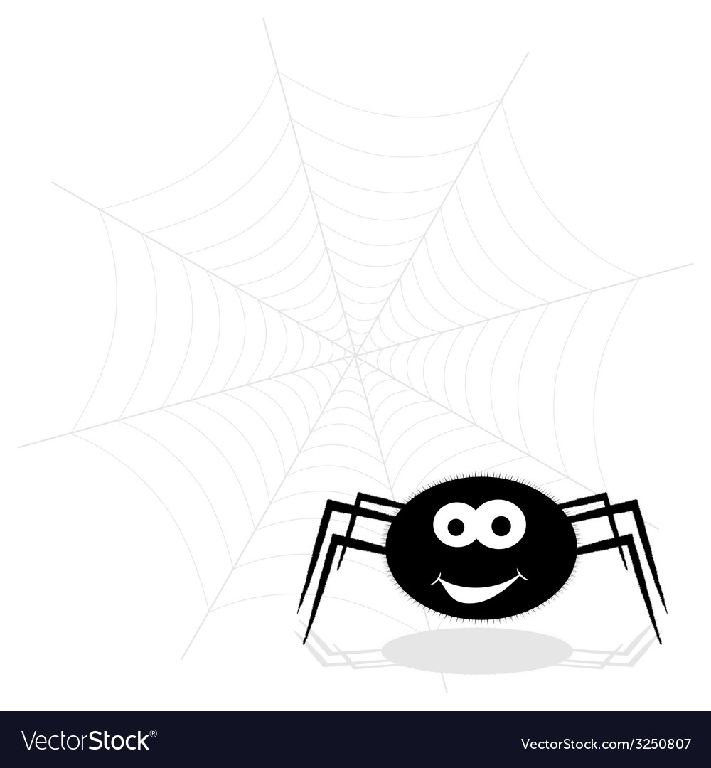 Spider funny and web vector