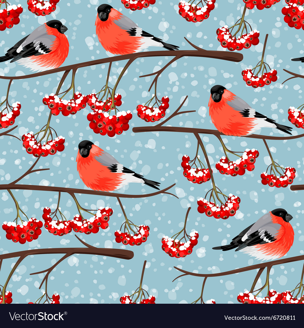 Seamless bullfinch and rowan vector